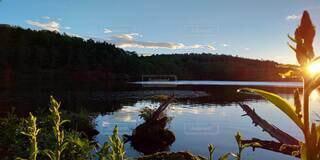 木々に囲まれた水面に映る青空と雲の写真・画像素材[4883209]