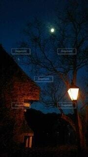 街灯越しの夜月の写真・画像素材[4889189]