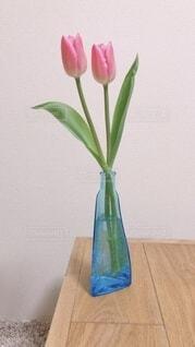 ピンクのチューリップの写真・画像素材[4902424]