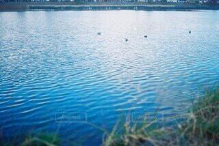 綺麗な水面の写真・画像素材[4904604]