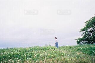 草むらに立っている女性の写真・画像素材[4907283]