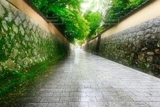 雨の城下町 下関市長府の写真・画像素材[4903306]
