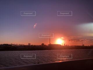 揺れる夕日の写真・画像素材[4879421]