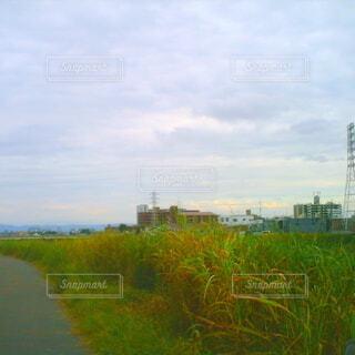 風景,空,屋外,雲,川,水面,草,草木