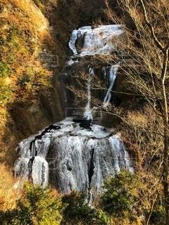 森の中の滝の写真・画像素材[4868293]