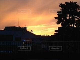 都市に沈む夕陽の写真・画像素材[4870246]