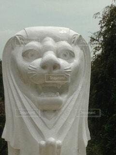間抜けな顔のマーライオンの写真・画像素材[4872815]