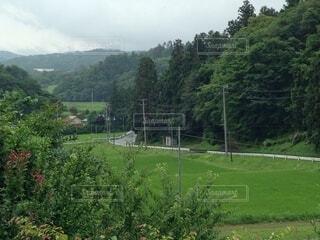 山と畑に囲まれた田舎の道路の写真・画像素材[4874281]