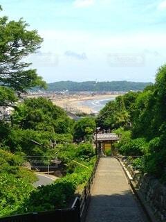 山の神社からビーチをのぞくの写真・画像素材[4875724]