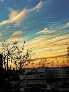 日没の写真・画像素材[4879124]