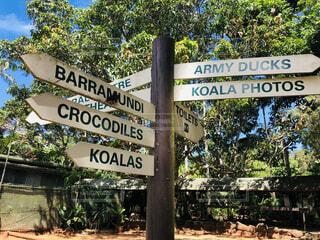 オーストラリア の道路標識の写真・画像素材[4875658]