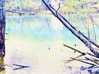 グラデーション湖の写真・画像素材[4877379]