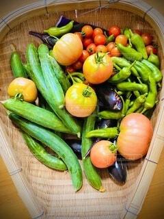 夏野菜の写真・画像素材[4880437]