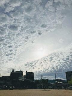 風の道の写真・画像素材[4880876]