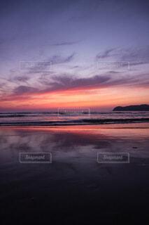 紫色の世界の写真・画像素材[4873149]
