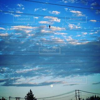 自然,風景,空,鳥,屋外,雲,月