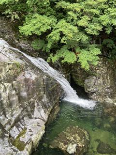 勢いよく流れ出る大自然の滝の写真・画像素材[4871337]