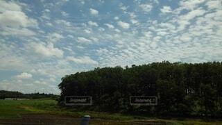淡い空の写真・画像素材[4880422]