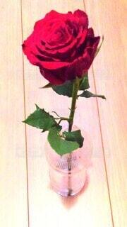 テーブルの上に花の花瓶の写真・画像素材[4896109]