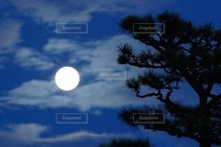 曇りの日に空を飛んでいる人の写真・画像素材[4873382]