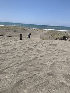 砂丘の写真・画像素材[4931474]