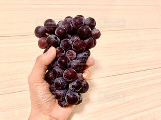 【フルーツ×手】手持ちのフルーツのクローズアップの写真・画像素材[4878828]