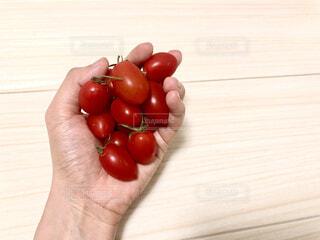 【トマト×手】手持ちトマトのクローズアップの写真・画像素材[4878841]