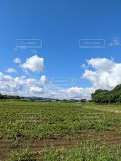 田舎の青空 おばあちゃん家の写真・画像素材[4875527]