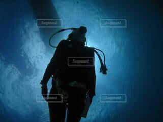 海底6メートルの写真・画像素材[4876309]