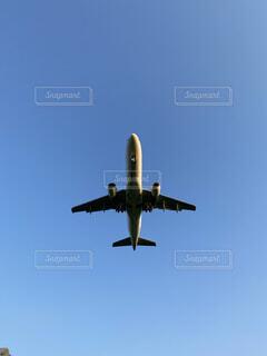 青空の中飛ぶ飛行機の写真・画像素材[4876322]