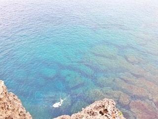 澄みきった海と海亀の写真・画像素材[4876316]
