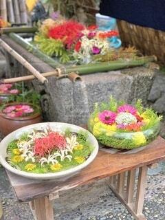 ベンチに座る花で満たされた花瓶の写真・画像素材[4876465]