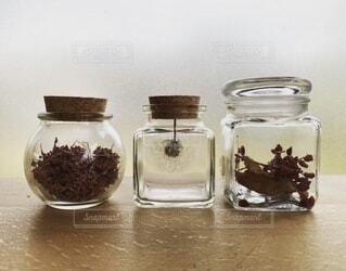 自然,屋内,植物,アート,ボトル,メイソンジャー,ボトルアート,食品保存容器
