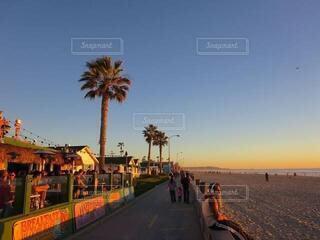 風景,海,空,カメラ,屋外,ビーチ,かわいい,海辺,アメリカ,日常,オシャレ,ヤシの木,sunset,明るい,サンセット,カリフォルニア,日の入,非日常,映え,エモい,写真映え