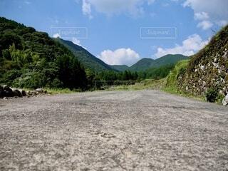 自然,風景,空,屋外,雲,山,樹木,道,地面,草木