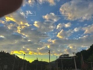 空,屋外,雲,樹木,朝,くもり,指入り