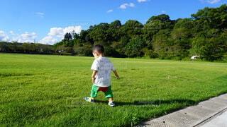 空,公園,夏,屋外,緑,草原,晴れ,後ろ姿,景色,草,樹木,人物,人,Tシャツ,赤ちゃん,幼児,少年,若い,遊び場,少し