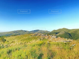 丘の写真・画像素材[4903567]
