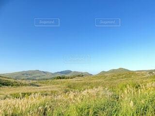 丘の写真・画像素材[4903572]