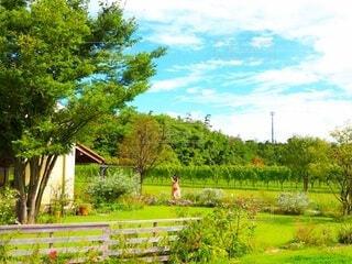 完成された庭にようこその写真・画像素材[4882351]