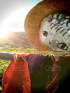夕陽が似合う男の写真・画像素材[1459258]