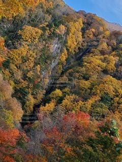 自然,風景,空,秋,紅葉,屋外,水,山,滝,樹木,草木