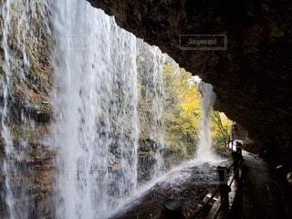 滝の裏から見る紅葉の写真・画像素材[4887603]