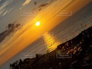 自然,風景,海,空,夕日,屋外,太陽,ビーチ,雲,夕暮れ,水面,ススキ,夕陽,日の出,ゴールド,すすき,琥珀