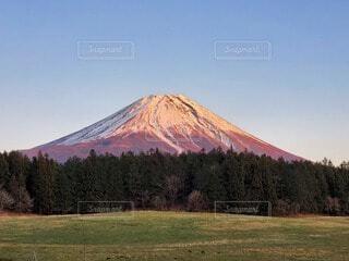 自然,風景,空,夕日,富士山,雪,屋外,ピンク,緑,雲,青空,雪山,山,景色,草,樹木,草木,赤富士