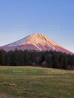 自然,風景,空,夕日,富士山,雪,屋外,ピンク,雲,青空,雪山,山,景色,草,草木,赤富士
