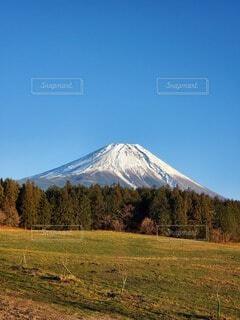 青い空の下、雪の富士山の写真・画像素材[4887663]