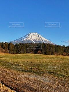 自然,風景,空,富士山,雪,屋外,雲,青空,雪山,山,景色,草,草木
