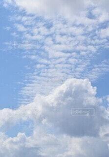 自然,空,屋外,雲,青,くもり