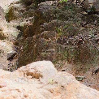 自然,屋外,岩場,山,登山,岩,草木,登山道,岩盤
